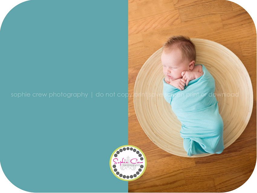 Voted best family photographer 2010 newborn baby child