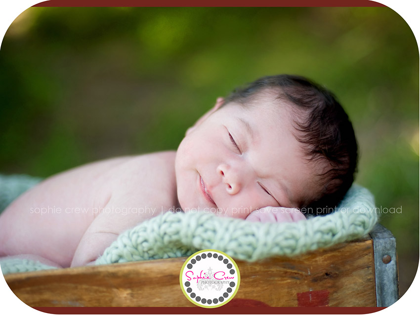 Encinitas Newborn Infant Photographer