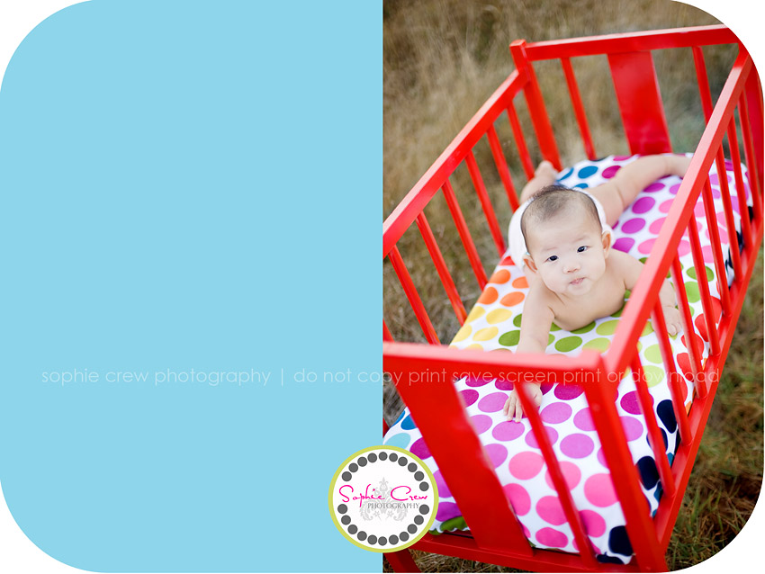 San Diego Baby Newborn Toddler Photography Professional Photographer North County East County