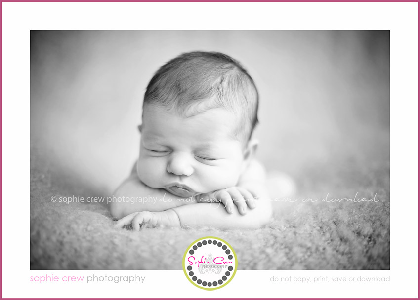 North County, Beach, Coastal San Diego, Newborn Photographer