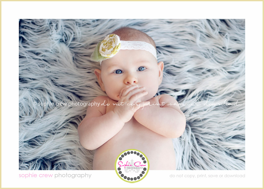 san diego north county newborn baby child family photographer