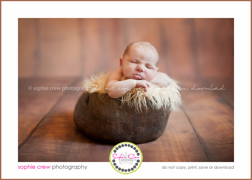 newborn baby photography posing maternity infant baby