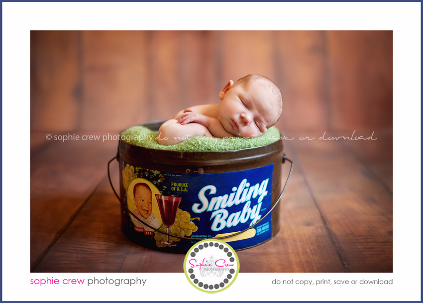 photography for baby