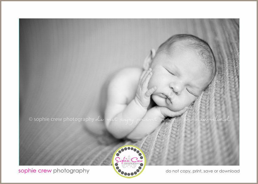 san diego best newborn photographers