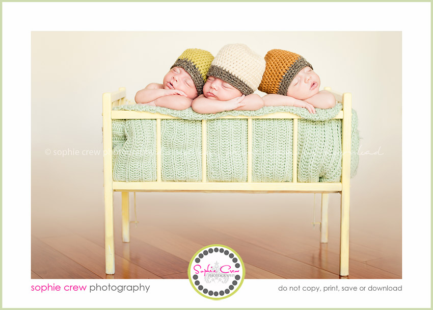 san diego newborn triplet twin multiples photographer