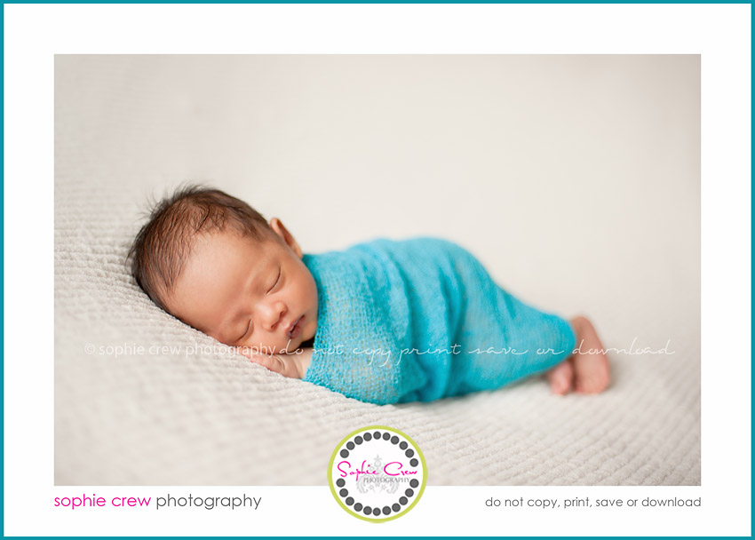 newborn baby photographers infant la jolla