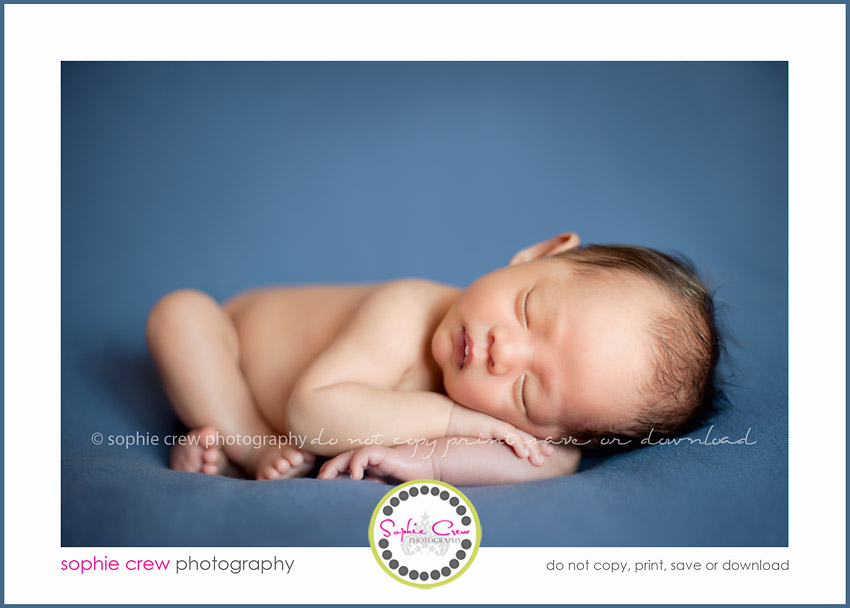 photography for baby newborn maternity pregnancy san diego