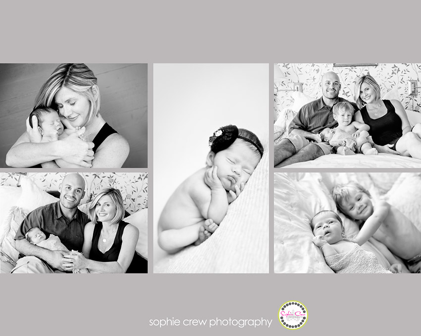 storyboard black and white newborn photos
