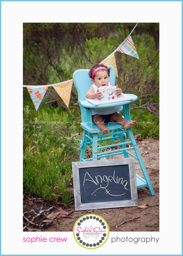 san diego cake smash one year portrait photographer