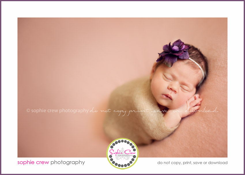 San Diego Newborn Maternity photo packages
