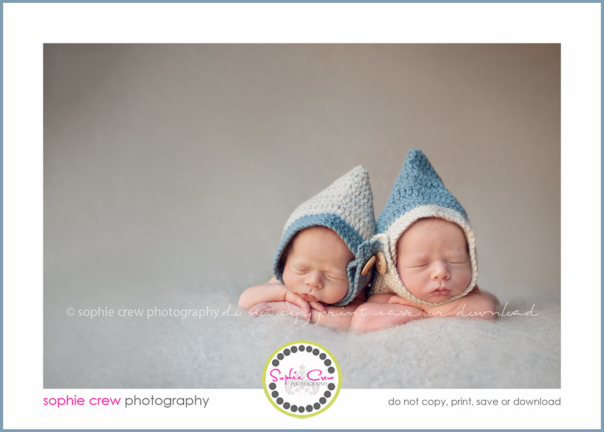 Newborn twin multiples triplets photographer baby infant · san diego newborn twin photography