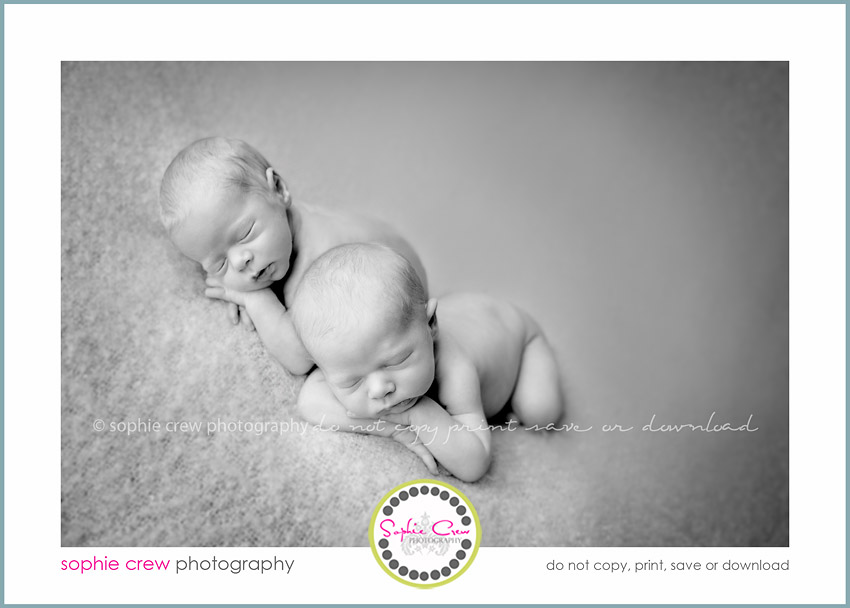newborn twin photographer san diego California natural light