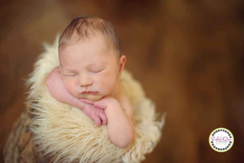 San diego newborn photographer best belly baby packages for maternity newborn sophie crew baby girl in bucket props rancho scripps mary birch maternity baby best