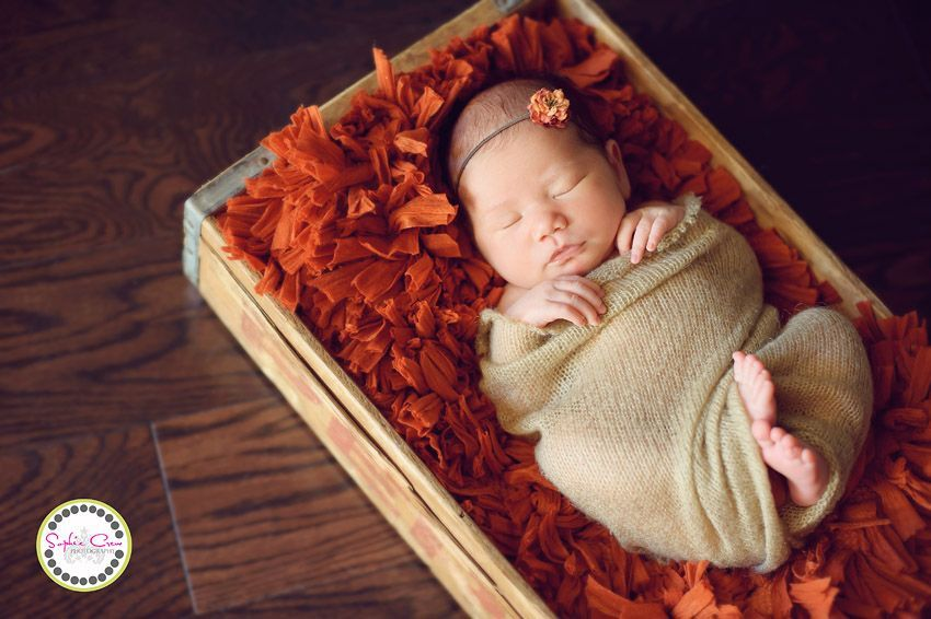 San diego newborn photographer sophie crew baby boy rancho downtown new baby expectant mother photo session scripps sharp hospital for women and newborns mary birch maternity baby best