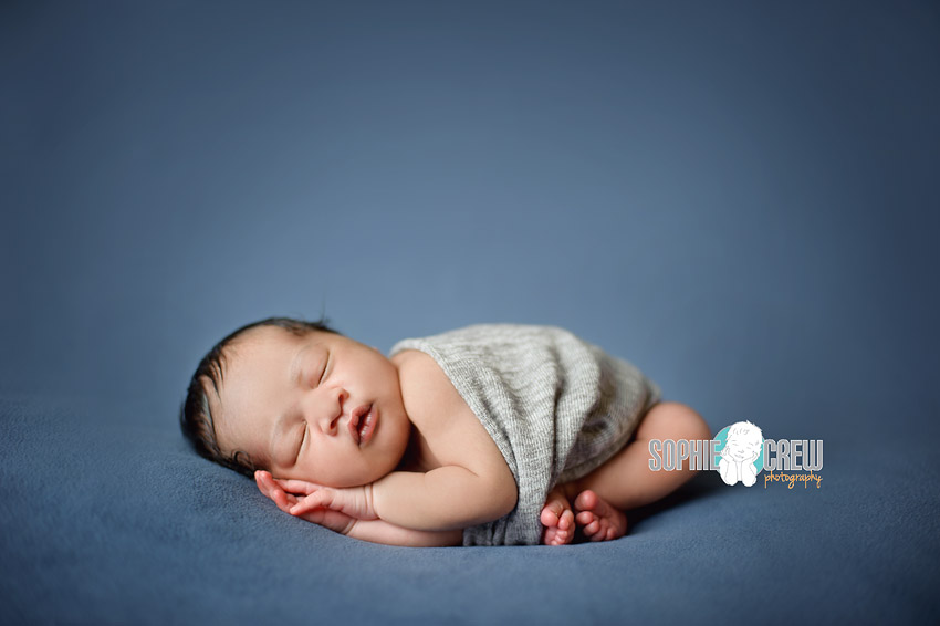 photography for baby newborn sophie crew san diego
