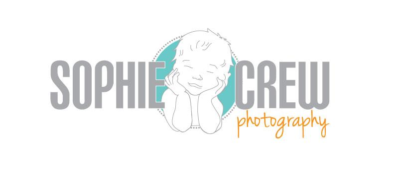 san diego newborn photographer logo maternity baby child family portraits
