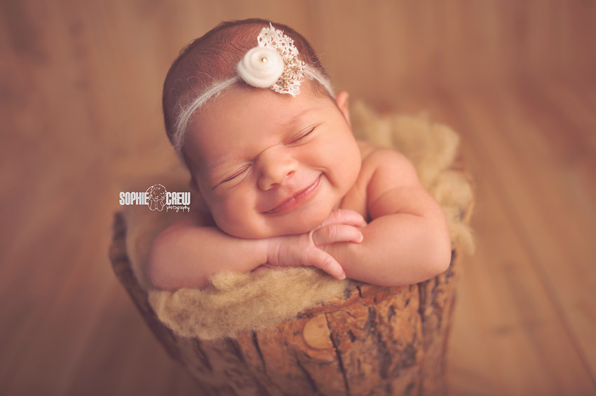 Two weeks new newborn photography