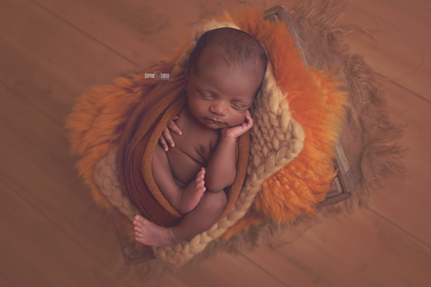 Newborn mini photo session posing