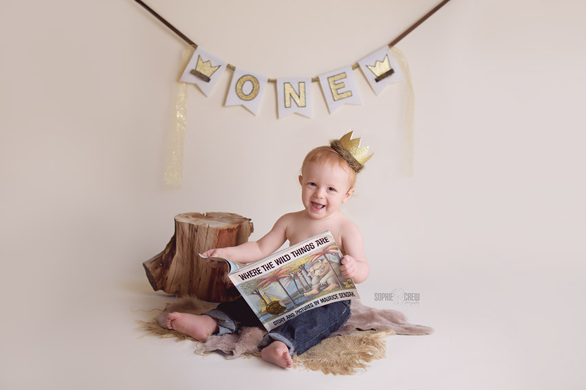 Cake Smash with Wild Things theme in San Diego Baby Photography studio