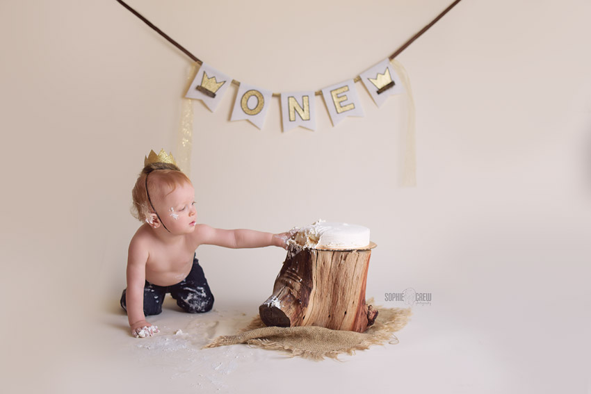 Where the Wild Things Are cake smash session
