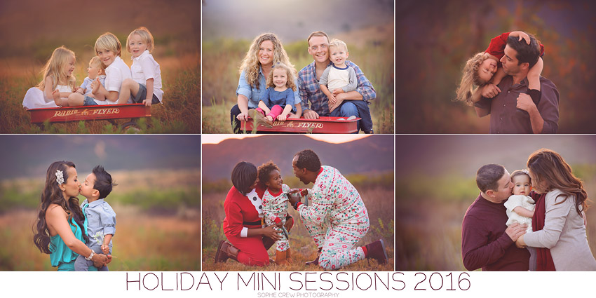 Limited Edition Holiday Mini Photo Session