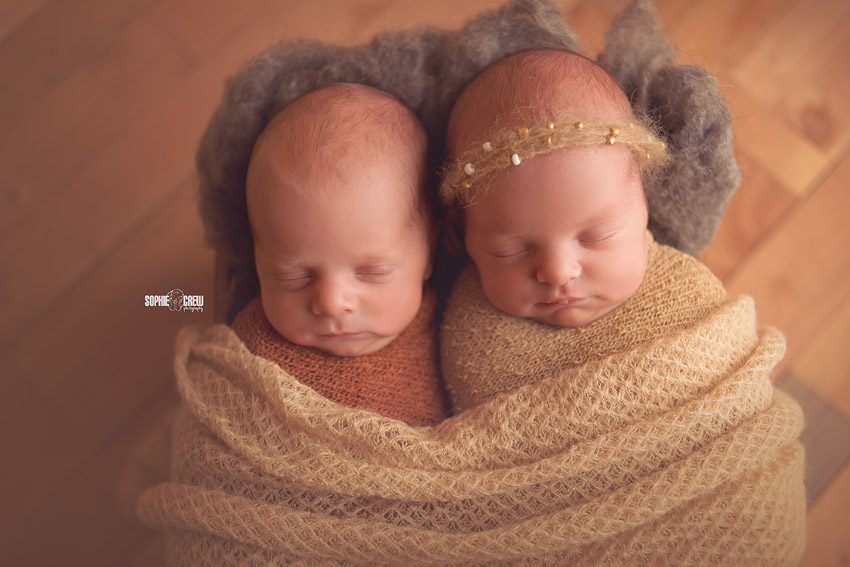 Newborn Twin Photographer