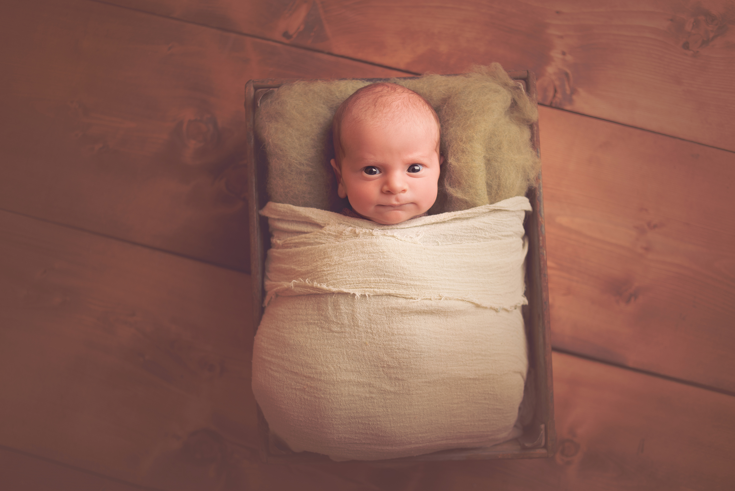 Funny expressions from newborns during baby photography