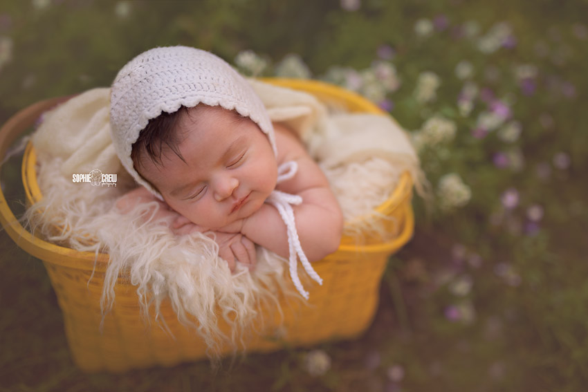 Newborn in nature in yellow basket for her outdoor newborn photography session in San Diego