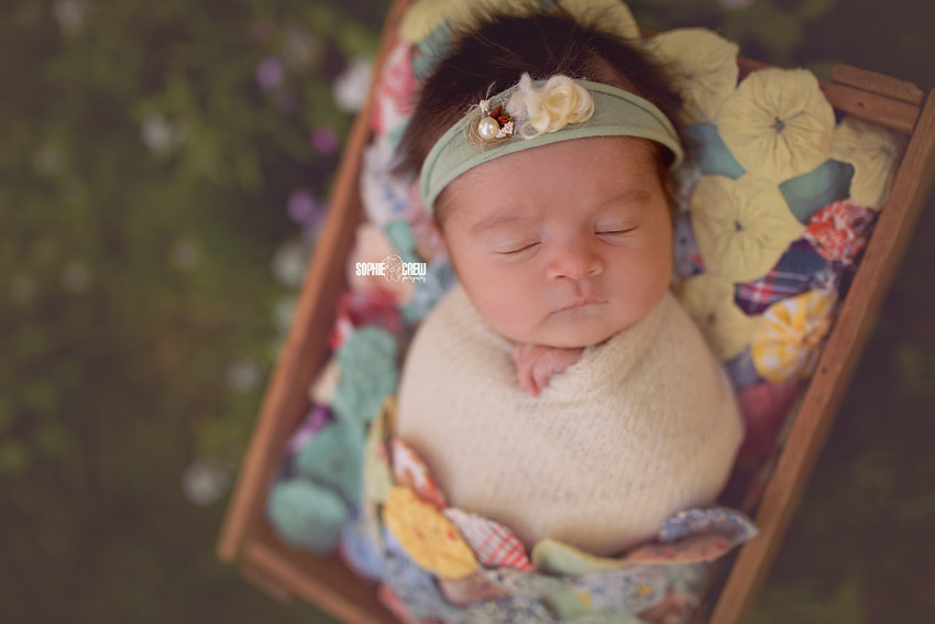 Sleeping and swaddled outdoor newborn photos