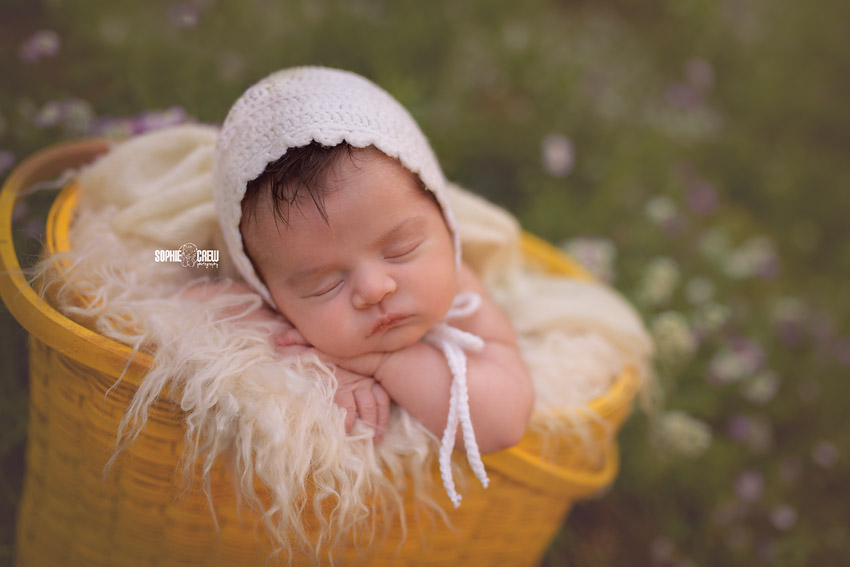 Newborn girl posed in yellow basket with white knit bonnet outdoors