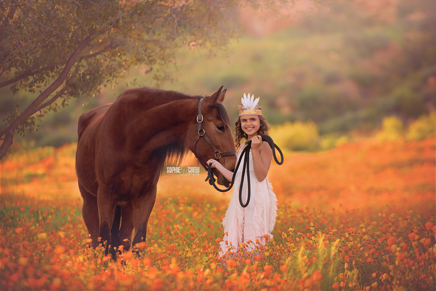 Horse and little girl in a field of orange wildflowers in San Diego during a stylized photography session