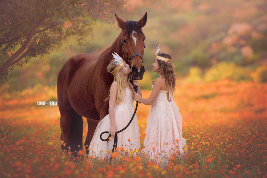 Little girls and brown horse during a stylized child photography session in San Diego