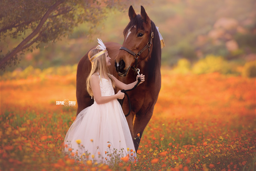 Girl faces brown horse in the middle of an orange field of wildflowers during photography session outdoors with Sophie Crew