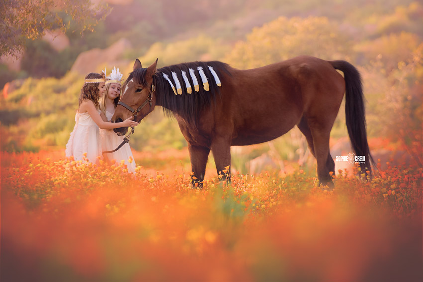 Horse is wearing feather decoration with girls in orange flower field