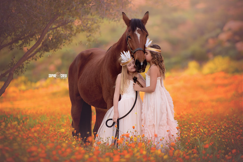 Horses, Wildflowers and Childhood Magic in San Diego