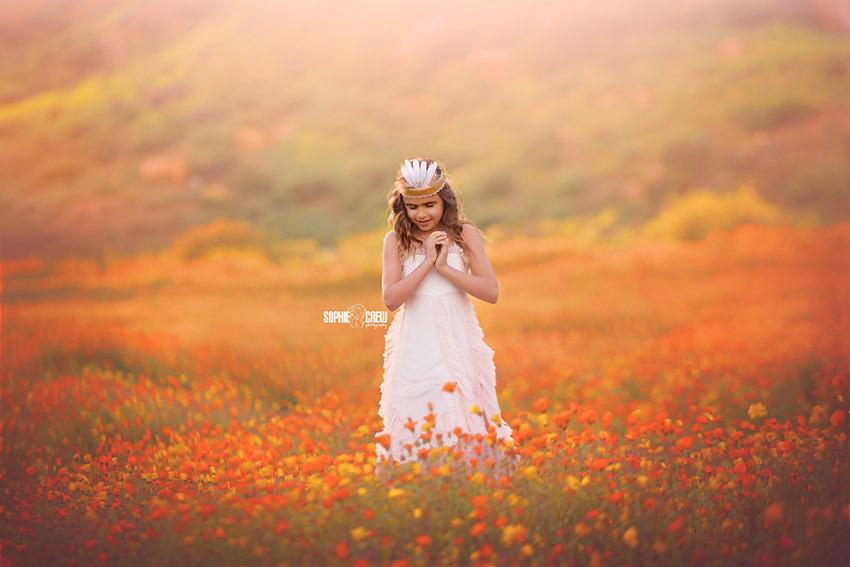 Photo session in orange flower field wildflowers in San Diego