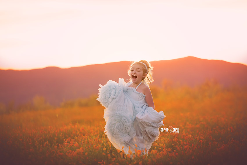A magical photography session with baby blue dollcake dresses in field of orange flowers in San Diego, CA