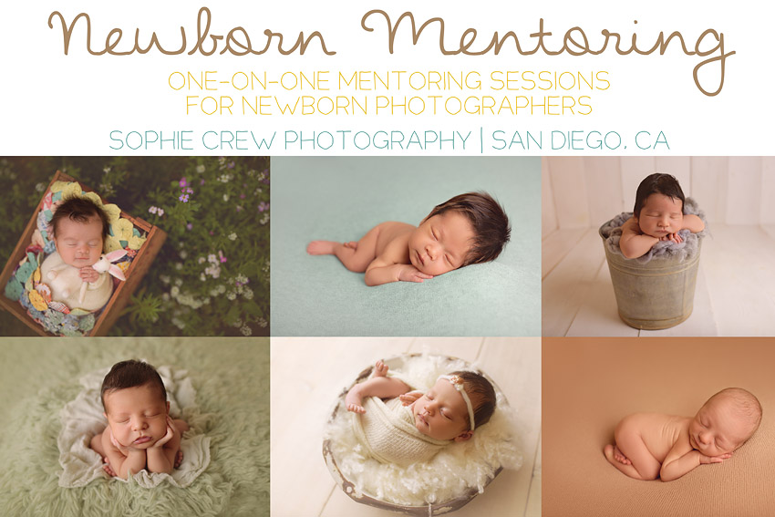 newborn mentoring in Southern California with infant photographer professional Sophie Crew Photography in San Diego, CA