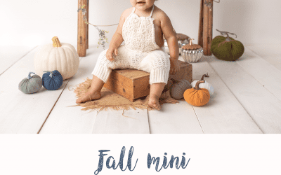 Fall Studio Mini Sessions