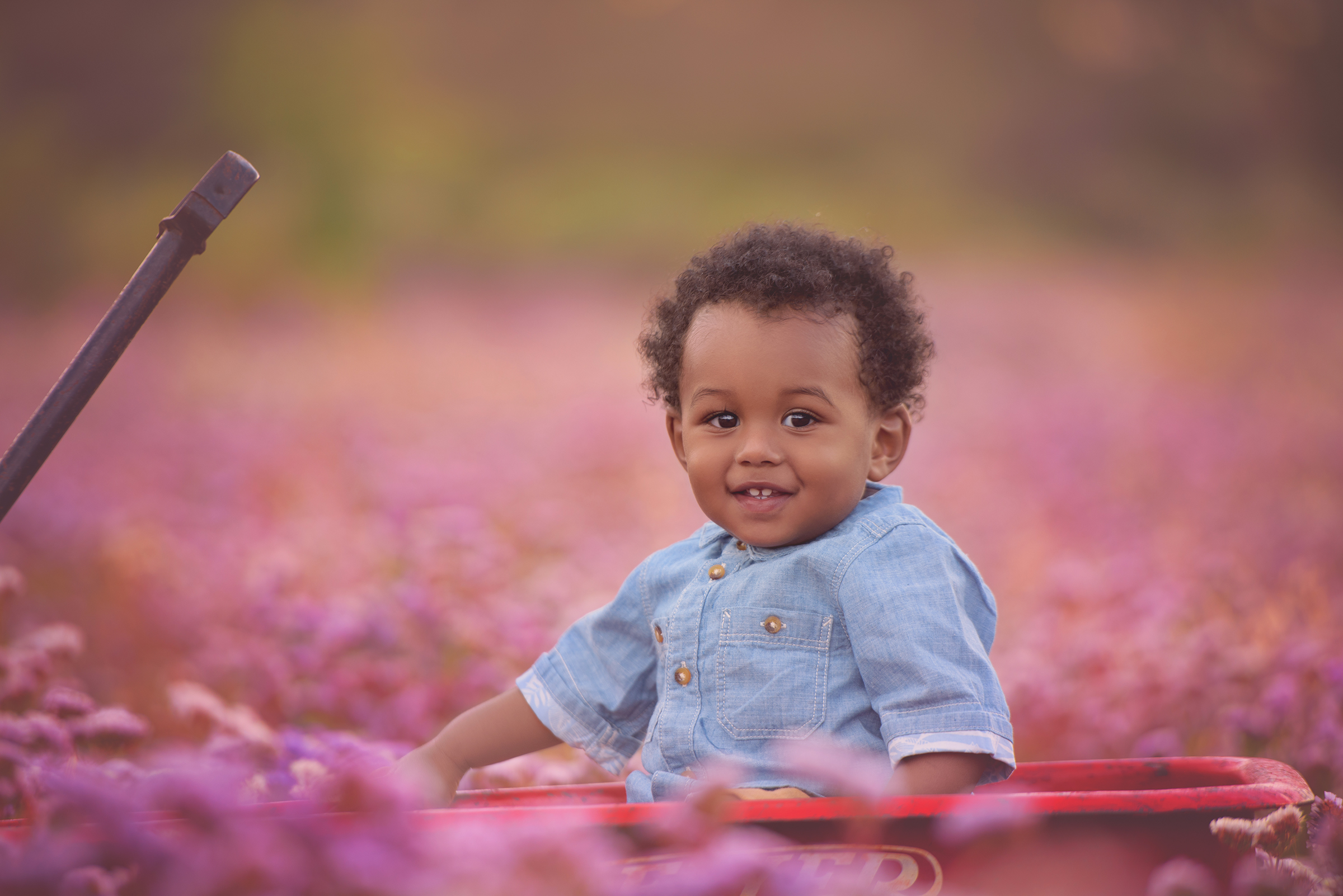 Baby boy 9 months sitting in purple wildflowers in San Diego for baby portrait photography session