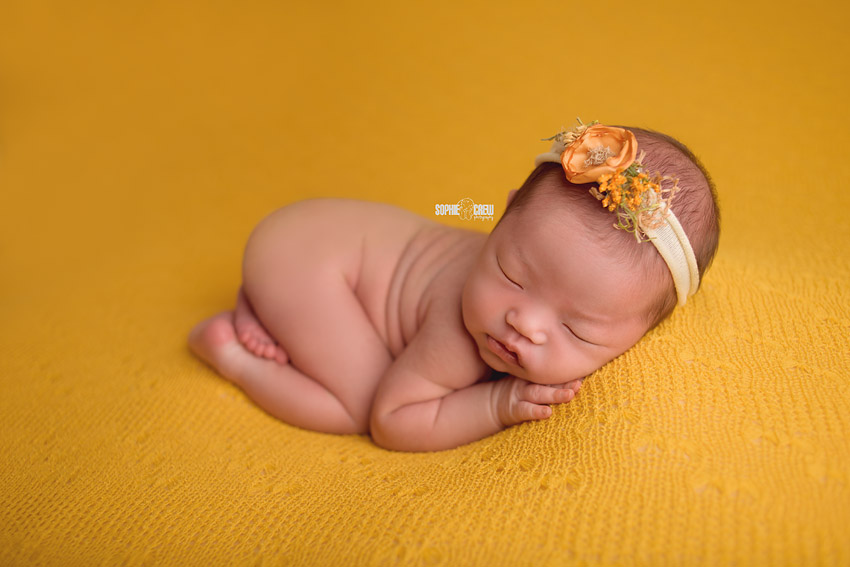 Images of yellow used in newborn sessions