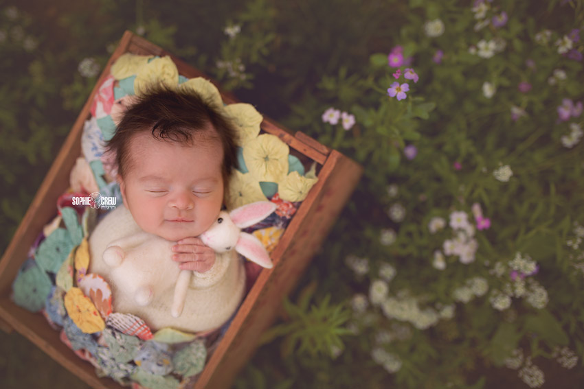 Newborn girl holds a white felt bunny for Easter photo in San Diego, CA