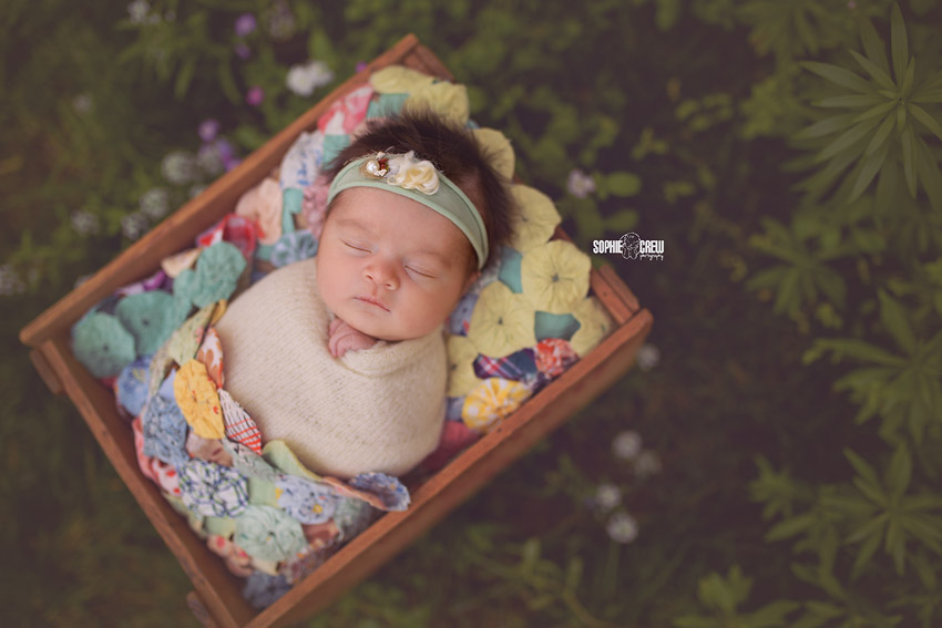 Outdoor photography for newborn and baby in San Diego, CA