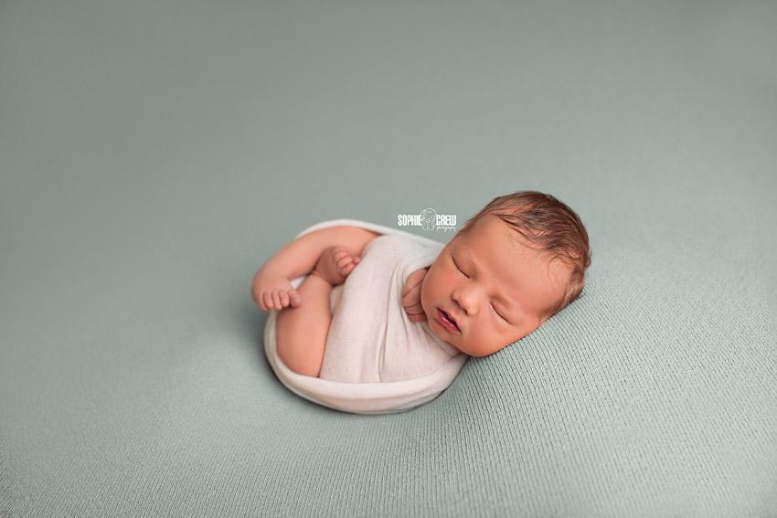 San Diego newborn photographer poses a swaddled newborn on a blue backdrop