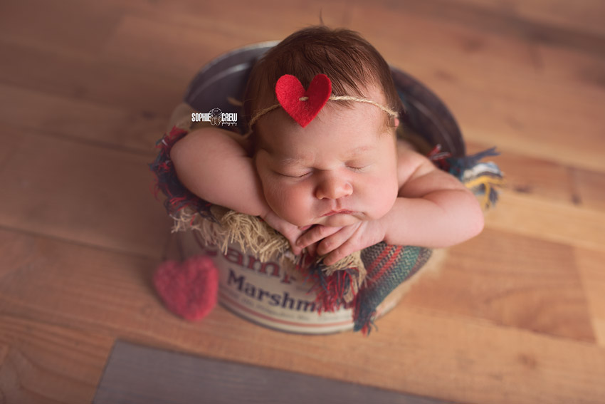 Newborn girl with a heart headband in a vintage Campfire Marshmallow tin bucket for her San Diego newborn photography session with Sophie Crew Photography