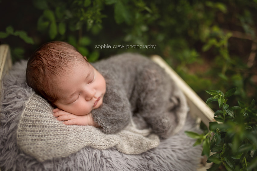 Newborn baby boy wearing fluffy knit romper for his outdoor newborn photographer by award winning newborn photographer Sophie Crew