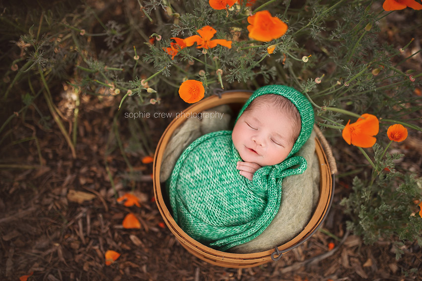 infant newborn baby photographer San Diego